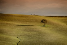 Toscana / Pictures from Toscana