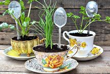 Gardening/Ideas/Tips