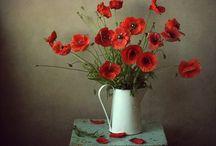 çiçekler yagli boya tsblosu