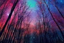 Dream Destinations  / by Brooke