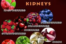healing kidneys