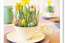 Signs of Spring  / 'Egg'citing Spring and Easter ideas