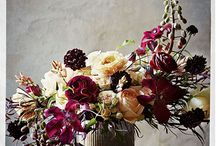 BUNGA & FLOWER / Type of FLOWERS : Arrangements