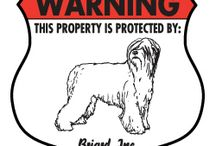 Briard Signs and Pictures / Warning and Caution Briard Signs. https://www.signswithanattitude.com/briard-signs.html