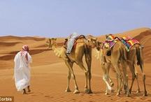 Make a note of it - DUBAI