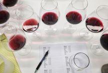 Ponzi Winemaking