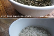 From The Herb Garden / How to grow and use herbs. / by Jams