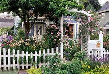 Englantilainen puutarha - English garden