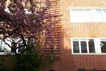 Amsterdamse School (details)