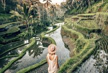 Dream Trip: Indonesia