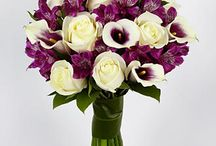 purple & white calla