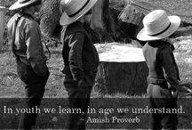 Everything Amish
