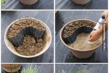 Garden - pot pond ideas
