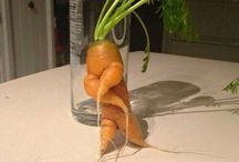try not to laugh / #funny #trynottolaugh #greece