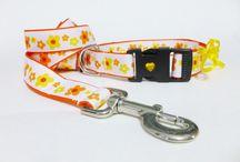Pet  Accessories / Accessories for pets. Accesorios para mascotas.