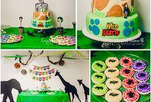 Wild kratts birthday ideas
