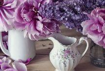 #Purple#