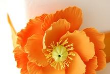 flores de pasta