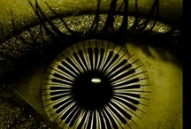 Eye See You! / by Tate Embree