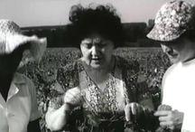 САД, ОГОРОД, ЦВЕТНИК || Биопрепараты и технологии / Подборка видео о зеленых технологиях и органическом земледелии