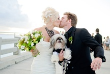 Pets in Weddings / Ideas for including your dogs, cats and other furry friends on your wedding day / by Floridian Social