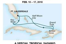 Quilt Cruise to the Caribbean February 2018 / Join me for a tropical Caribbean Cruise, February 10-17, 2018.
