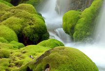 Water falls  / by Shabbir Bhutta