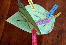Science Lesson Plan - Plant
