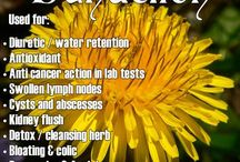 Natural medicine / by Laurie Flynn