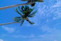 I ❤ the beach! / ❤ ☀