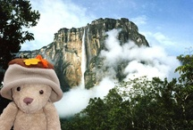 Archie's Travels 2011 / Last summer Archie the Acorn went on a virtual vacation around the world.  Every other day he arrived at a new location where he was photographed in front of a famous landmark.  People got in touch to tell us where they thought he was.  He's the hat by the way and you can see him here with his friend Sebastian the Teddy Bear.  For the all the locations of all the stops that Archie the Acorn (and his intrepid hat) made during the summer of 2011 you can find them here http://bit.ly/y4Db63.