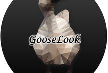 GOOSELOOK / www.instagram.com/gooselook