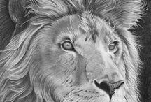 Kresba - my pencil drawings / Relaxační kresba tužkami, převážně na formát A4.  Ráda si nakreslím, vše co mi do oka padne....