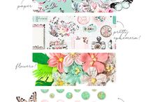Sneak Peeks / Come here to see the latest release sneak peeks from Prima Marketing Inc