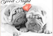 Good Night & Good Morning pics