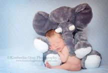 Newborn Photos / by The Art of Making a Baby