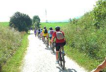 Colli Berici ed Euganei: bici e trekking sulle orme del Palladio / Una vacanza in bicicletta lungo la famosa riviera vicentina, tra i Colli Berici e i Colli Euganei, nei territori del Palladio e della sua elegante architettura, attraverso accoglienti valli e antichi borghi, tra buona cucina, tanto verde e piste ciclabili tranquille. http://www.jonas.it/vacanza_in_bici_Vicenza_1229.html