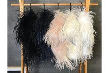 Ostrich Feather Fashion