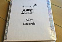 GoatRecords
