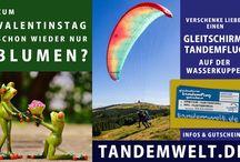 Tandemwelt / Gleitschirm-Tandemflüge: Gutschein verschenken oder selber mitfliegen!
