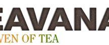 Teavana MY Favorite Teas