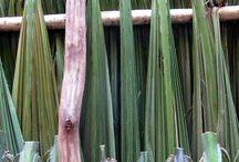 Palm awning