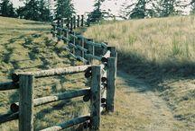 Murray fence