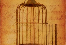 neat old things / http://bird-cages-forsale.com