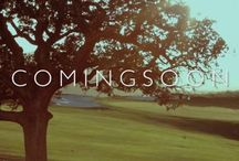 Wedding Video Teasers / A collection of bay area wedding videographer teasers created by the reb6studios team!