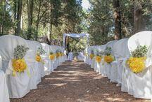 Mariage décoration jaune
