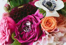 Flowers - Red (Flori - Rosu)