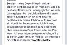 Aktuelle NotFelle / Einige unserer aktuellen Notpfoten, die bereits in Deutschland bei Pflegestellen auf Euch warten...