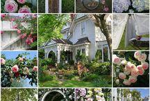 En attendant la fin des travaux rien n'empêche de commencer à rêver de l'aménagement du jardin