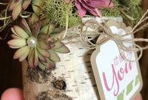 succulente stampin'up